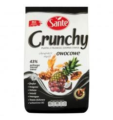 Płatki Crunchy owocowe Sante 350g