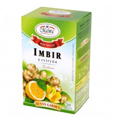 Imbir i cytryna Malwa 20 torebek